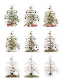 Time lapse - Christmas tree — Stock Photo