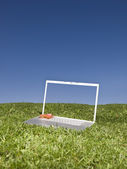 Laptop outdoors on a green field — Stock Photo