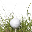 Golf ball — Stock Photo #2093918