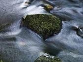 Stone w moss — Stock Photo