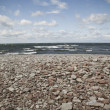 Stone Beach — Stock Photo #2116321