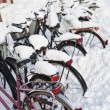 Royalty-Free Stock Photo: Bicycles at wintertime