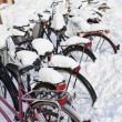 Stock Photo: Bicycles at wintertime