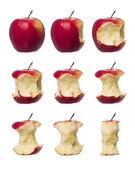 Apples in progress — Stock Photo