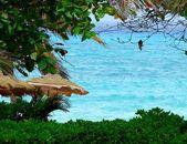Palapas and ocean sea view — Stock Photo