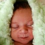 Newborn napping close-up — Stock Photo