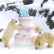 Polar bears funny giant birthday cake — Stock Photo