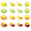 Vector de stock : Lemon and orange logos and icons