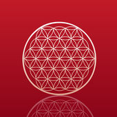 Flower of life — Vector de stock