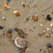 Stock Photo: Wet colorful stones and shell on sand