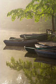 Waterside cafe in a misty morning — Stock Photo