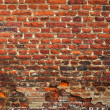 Old brick wall — Stock Photo #2460503