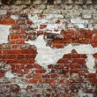Grunge red brick wall texture — Stock Photo #2519122