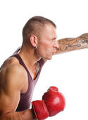 Boxer in the fight — Stock Photo