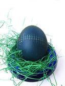 Ovos de pascoa — Fotografia Stock
