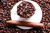 Coffee and cigar on coffee beans — Stock Photo