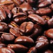 Close-up golden coffee bean — Stock Photo