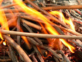 Camp-fire — Stock Photo