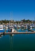 Blue and White Boats Reflected at Marina — Stock Photo
