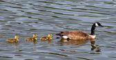 母亲和三个孩子 — 图库照片