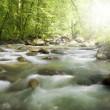 Mountain stream — Stock Photo #2357840