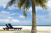 Beach with chair — Stock Photo