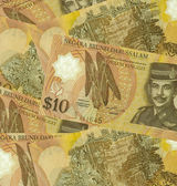 Brunei darussalam currency — Stock Photo
