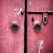 Royalty-Free Stock Photo: Ancient red door