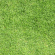 Green grass background — Stock Photo #2364325