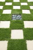 Pěstěném trávníku. — Stock fotografie