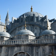 Blue Mosque. - Stock Photo