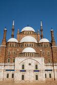 モハメド アリ モスク — ストック写真