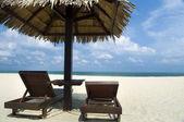 Vacaciones en la playa. — Foto de Stock