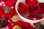 Rose petal spa — Stock Photo