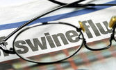 Focus on swine flu — Stock Photo