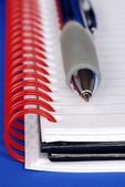 A pen and a notebook with red binder — Foto Stock