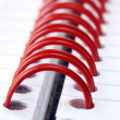 Stock Photo: A fragment of the spiral note pad