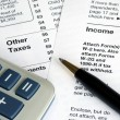 Stock Photo: Filing the income tax return by hand
