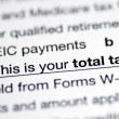 Stock Photo: Focus on total tax in tax return