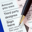 Sign the income tax return — Stock Photo