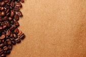 Coffee bean — Stock Photo