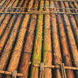 Bamboo raft — Stock Photo #2011413