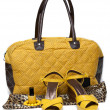 Feminine bag and pair yellow loafers — Stock Photo