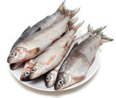Fresh fish whitefish on plate — Stockfoto
