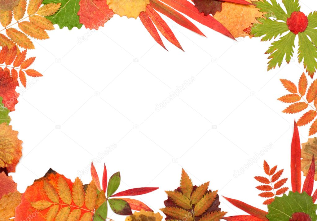 Frame from autumn sheet on white background  Stock Photo #2119588
