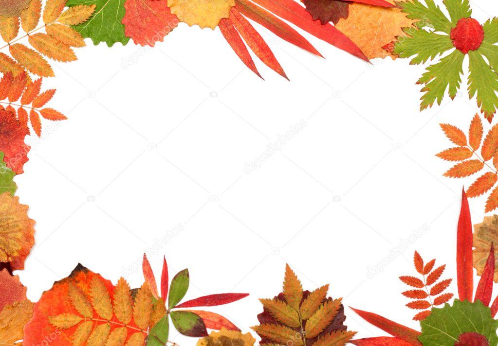 Encadrer leur feuille d 39 automne photographie ruslan - Image feuille automne ...