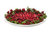 Cowberry on plate — Stock Photo
