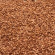 Buckwheat, background — Stock Photo
