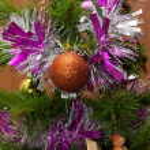 Fir tree, cristmas — Stock Photo