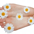 Feminine foots and daisywheels — Stock Photo